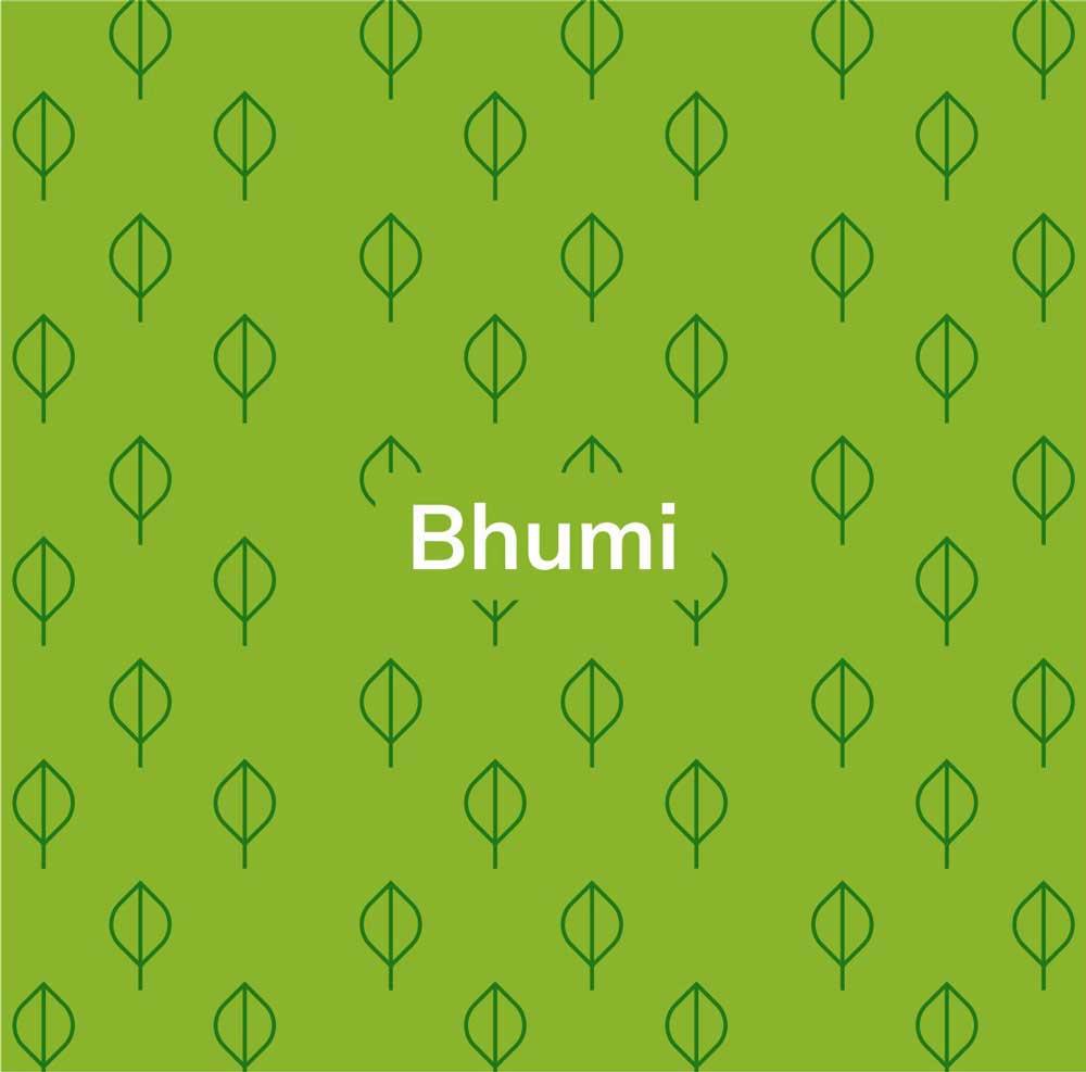Sunshot-Bhumi